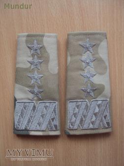 Pochewki z oznakami stopnia - generał
