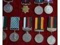 Zobacz kolekcję Pakistańskie odznaczenia