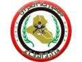 Zobacz kolekcję Irackie Siły Zbrojne