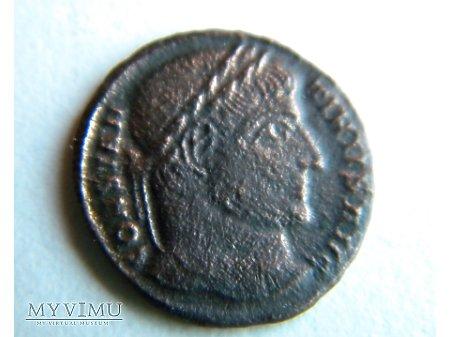 Duże zdjęcie rzymek