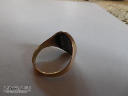 herb Korczak- sygnet złoto