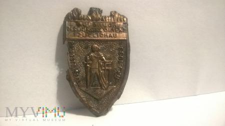 Odznaka Zullichau 1933 -zjazdówka