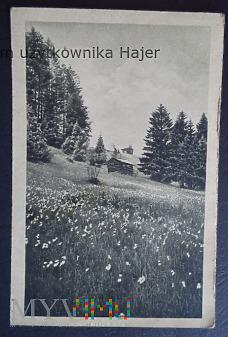 Feldpost Beuthen 1944 rok