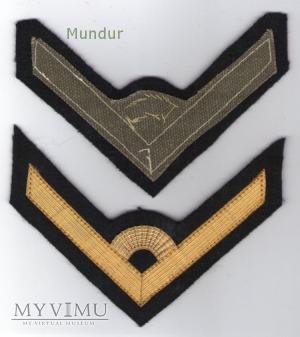 Dystynkcje do munduru wyjściowego MW -mł.chorąży