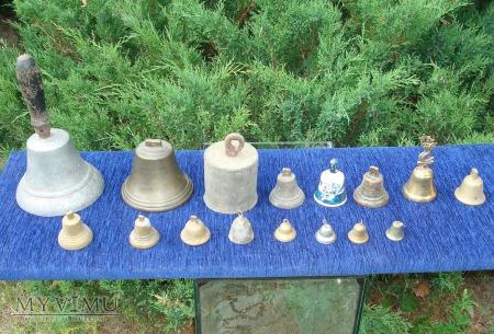 Dzwonki i dzwoneczki