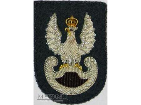 Orzeł Wojsk Specjalnych
