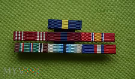 US Army: 7 baretek odznaczeń