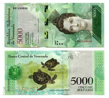 5000 Bolívares Fuerte 2016 (B 51229856)