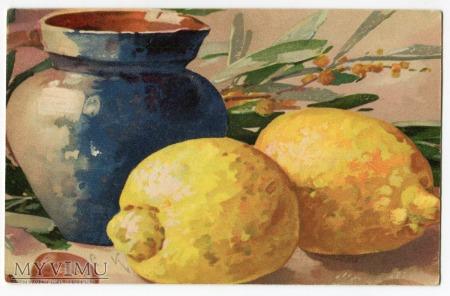 Catharina C. Klein cytryny owoce Fruit Postcard