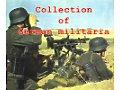 German militaria