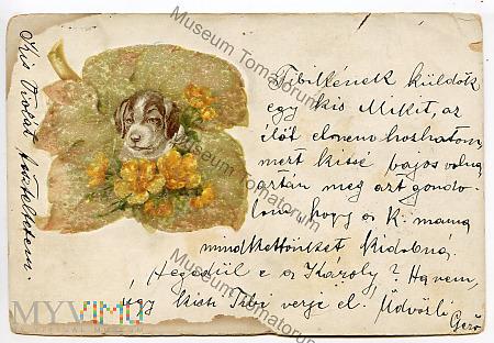 Pocztówka artystyczna 1903
