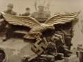 Orzeł Luftwaffe z letniej kurtki mundurowej