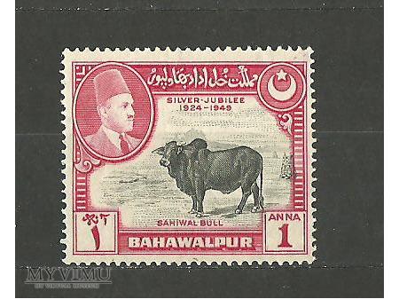 Bahawalpur.