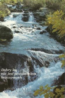 DOBRY LOS...