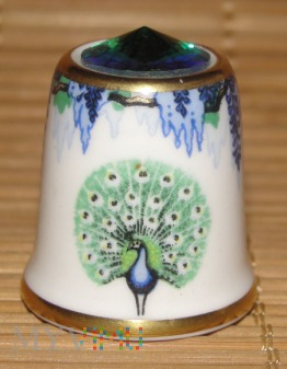 SUTHERLAND/Wisteria Peacock