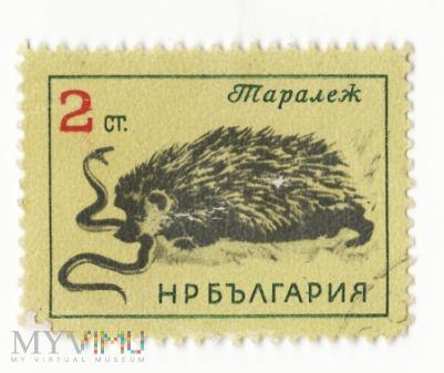 Znaczek pocztowy -Zwierzęta 20