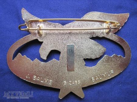 Odznaka szkolenia górskiego 2REG/złoto