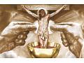 Zobacz kolekcję Szaty Liturgiczne