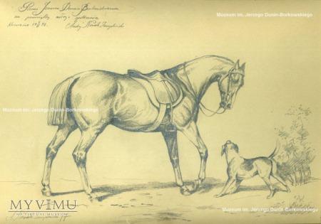 Duże zdjęcie A. Novak-Zempliński, Koń i pies, 1977 r., ołówek