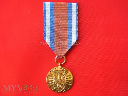 Za Zasługi w ochronie porządku publicznego - złota