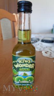 Bols Kiwi Wonder