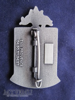 1er R.E.C., opération LICORNE 2010