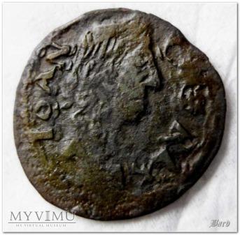 1664-boratynka koronna