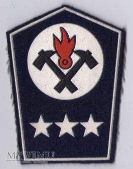 Dystynkcje OC służba przeciwpożarowa-kom. plutonu
