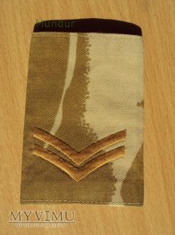 Wieka Brytania - oznaka stopnia: kapral