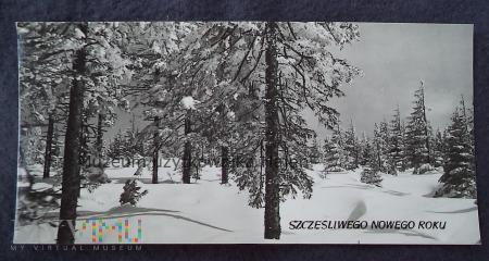 Szczęśliwego Nowego Roku - kartka pocztowa