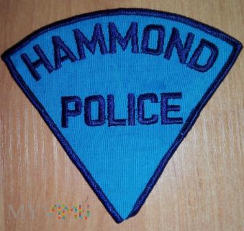Hammond policja