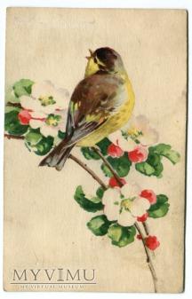 Catharina C. Klein Kwiatki i ptaszek Flowers Birds