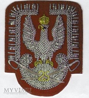 25 Brygada Kawalerii Powietrznej