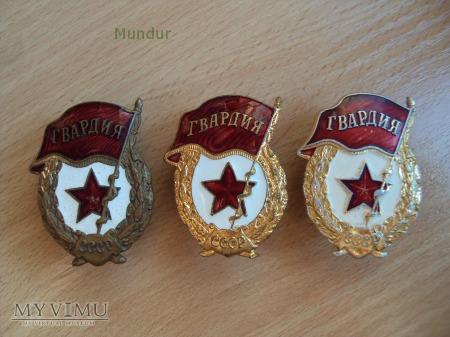 Odznaka GWARDIA
