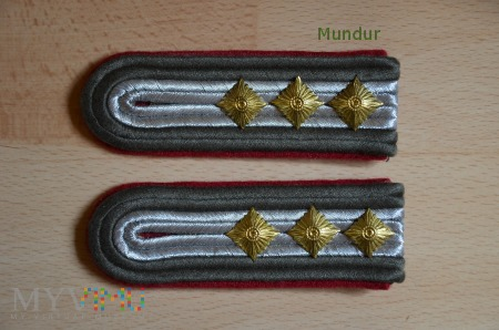 Oznaki stopnia Artillerie - Stabsfähnrich