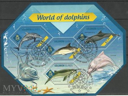 Świat delfinów.
