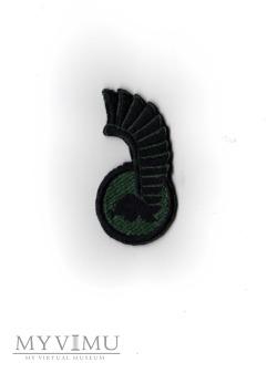 11 Lubuska Dywizja Kawalerii Pancernej - polowa