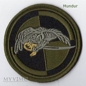 Emblemat polowy 25 Dywizja Kawalerii Powietrznej