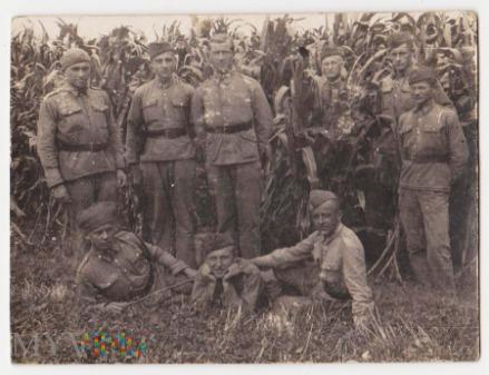 Krowica Hołodowska 1933