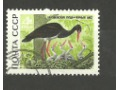Чёрный аист