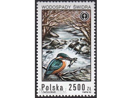 Wodospady polskie - 1992