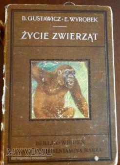 ksiązka Życie zwierząt