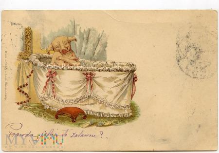 Świnka Noworoczna - 1899(?)