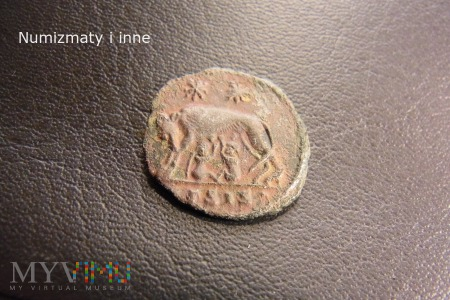 Constantynopolis follis Konstantyna Wielkiego