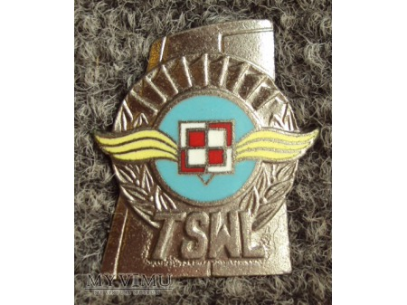 Odznaka absolwenta TSWL