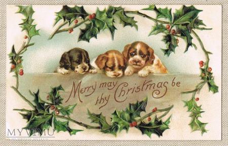 1911 r. Wesołych Świąt Pieski małe trzy