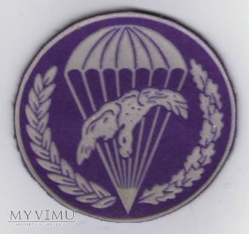 Oznaka 6 batalion łączności, 6bpd 6PDPD