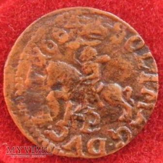 Boratynka litewska 1664