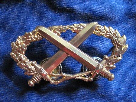 Odznaka B.M.P złota