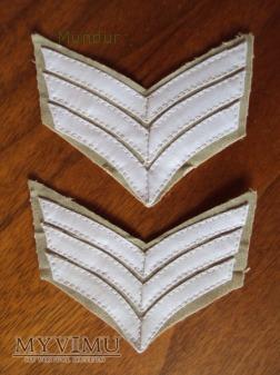 Indyjskie dystynkcje wojskowe: sierżant